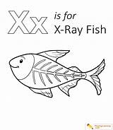 Fish Coloring Xray Pages Letter Ray Preschool Sheet Playinglearning Worksheets Sheets Rays Popular Crafts Electromagnetic Form Radiation sketch template