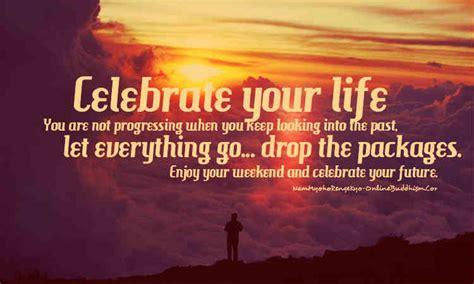 celebrate  life quotes quotesgram