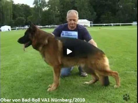 Ober Von Badboll Va1 Nürnberg 2010mp4 Youtube
