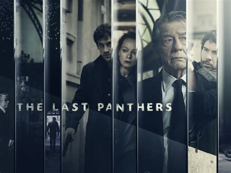 the last panthers review tv the last panthers or nah project fandom