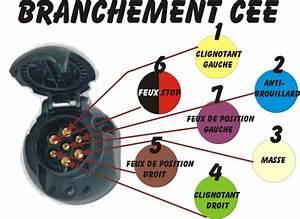Branchement D Une Prise : branchement prise remorque voiture ~ Dailycaller-alerts.com Idées de Décoration