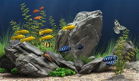 t 233 l 233 charger aquarium screensaver pour windows t 233 l 233 chargement gratuit