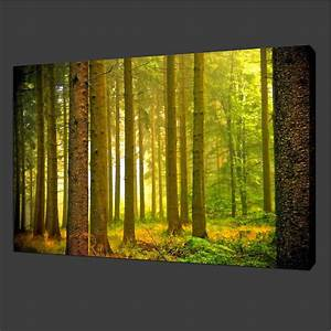 Canvas prints home decor pictures modern wall art