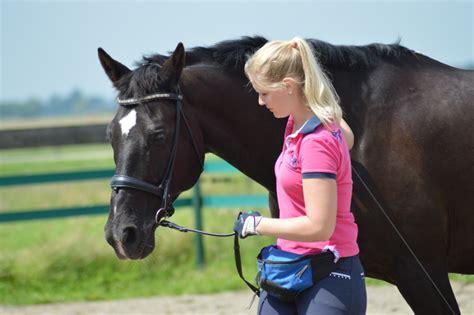 hautprobleme fellwechselprobleme und kotwasser beim pferd