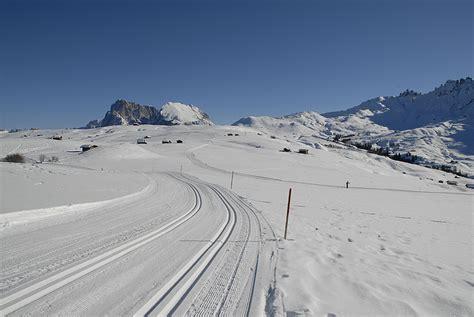 cross country skiing  alpe  siusi   south tyrol