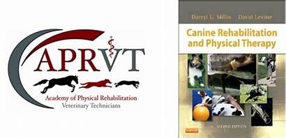 Rehabilitation Canine Physical Therapy Millis
