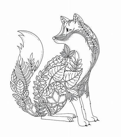 Fox Coloring Pages Printable Getcolorings