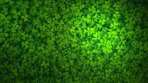 St Patrick's Day HD Wallpaper - WallpaperFX