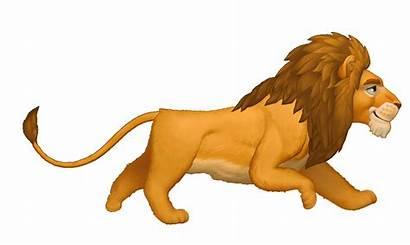 Run Animals Cycle Behance Lion Animation Animal