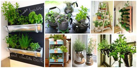 kitchen garden ideas indoor kitchen garden ideas 28 images indoor kitchen