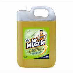 brush floor cleaner mr muscle floor cleaner 5 ltr jw1155 163 14 95 chaucer solutions