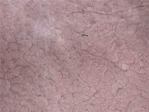 Skin Veins Texture | www.pixshark.com - Images Galleries ...