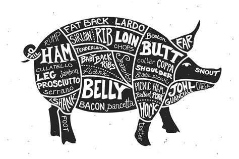 Labeled Cuts Meat Pig Illustrations Creative Market