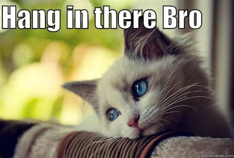 Hang In There Cat Meme - lots of brolove quickmeme