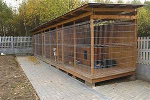 happy together how to train successfully in a multi dog With large dog house for multiple dogs