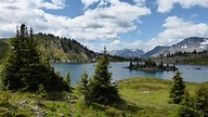 Canada must increase protected areas by 60 percent in ...