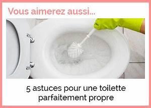 Déboucher Les Toilettes : deboucher un toilette top top toilette with pompe pour ~ Melissatoandfro.com Idées de Décoration