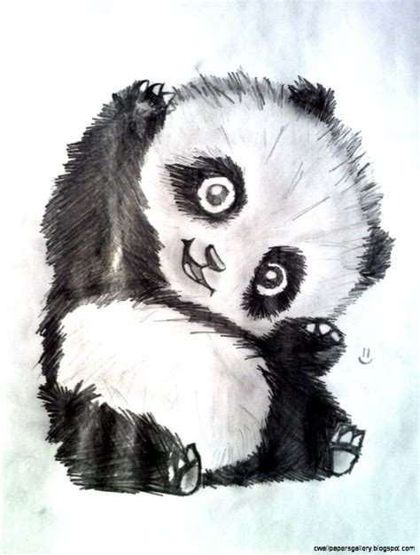 cute panda drawing tumblr wallpapers gallery