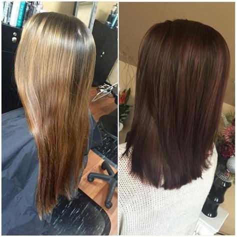 rich brown hair color the 25 best rich brown hair ideas on