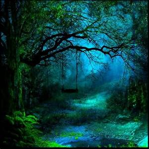Beautiful, Beautiful forest and Trees on Pinterest