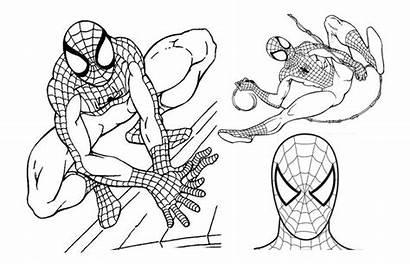 Spiderman Mewarnai Gambar Belajarmewarnai Buku