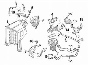 Volkswagen Touareg Secondary Air Injection Pump Hose