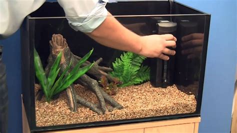 setting   goldfish aquarium youtube