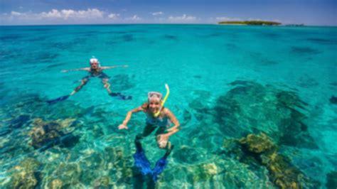 green island great barrier reef snorkelling great adventures cruises great adventures