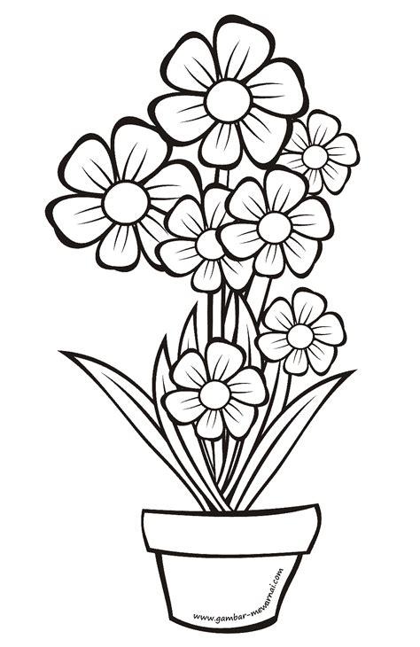 kumpulan gambar sketsa bunga dalam pot aliransket