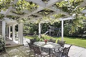 Pergola Plant Vine Landscaping Network Decorative Fencing: Decorating The Modern House
