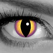 Seducer Contact Lenses by GOTHIKA   Purple Cat Eye Contacts