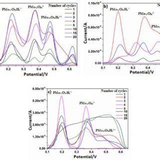 schematic representation   preparation  polyvinyl chloride  scientific diagram