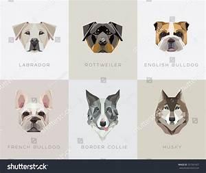 Modern Contemporary Geometric Dog Breeds Vector Stock ...