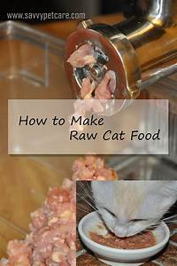 Raw cat food how to make raw cat food savvy pet care for Costco raw dog food