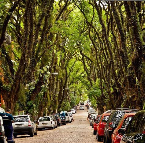 Die Schönsten Straßen Deutschlands die 10 sch 246 nsten stra 223 en der welt greenspired