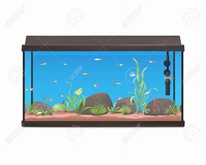 Aquarium Fish Tank Clipart Turtle Fishtank Clip