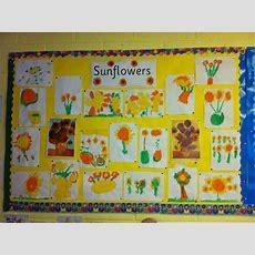Sunflower Art Display, Classroom Display, Plant,flower, Sunflower