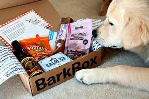 bark box better than a belly rub With precision dog training