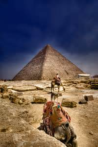 Cairo Egypt Pyramids and Camels