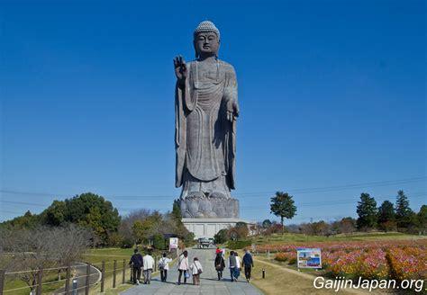 cap de cuisine ushiku daibutsu l 39 ex plus grand bouddha du monde un