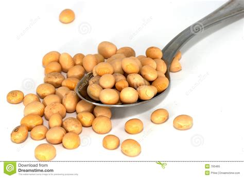 Soyabean Spread Stock Image Image Of Asia Benefits Food