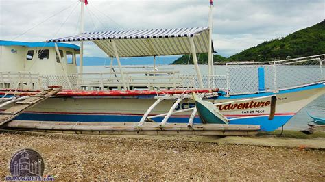 Dolphin Boat Rentals by Manjuyod Sandbar Dolphin In Bais Dumaguete City
