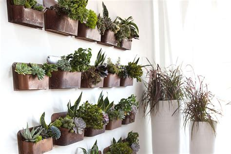 Rustic Wall Planter   MOSS MANOR: A Design House