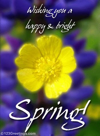 wishing   happy bright spring pictures