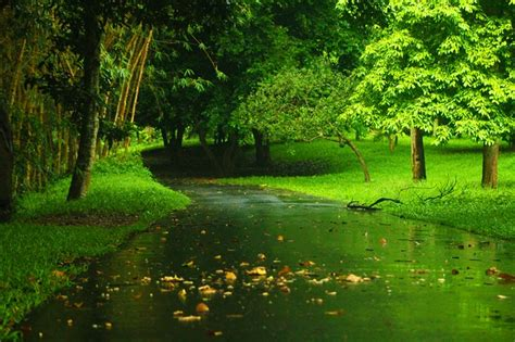 Landscape Nature Green · Free Photo On Pixabay