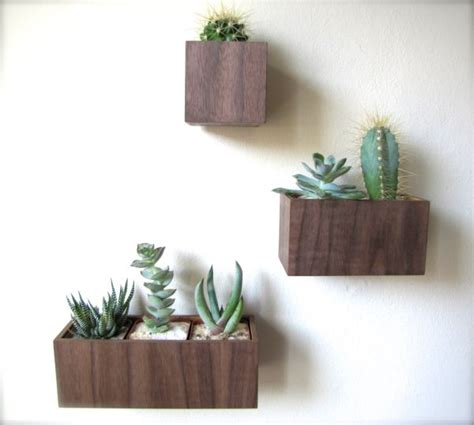 wall mounted planters hanging planters and container garden ideas for indoors