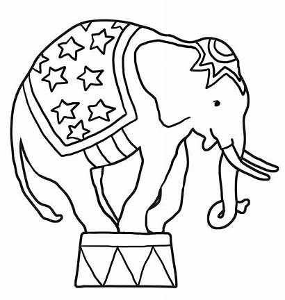 Elephant Circus Coloring Pages Drawing Indian Elephants