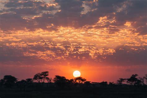 serengeti sunrise vancouver photographer vince chow