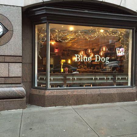 blue dog kitchen  york city    st hells