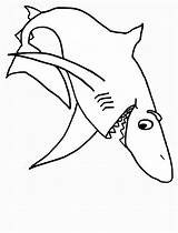 Shark Sharks Coloring Pages Print sketch template